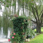 landscaping and gardening in Florida